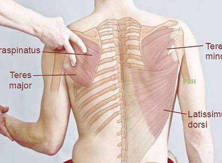 Getting To Know The Lats!
