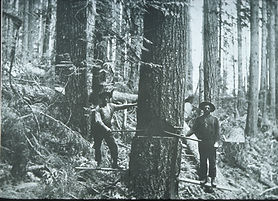 Loggers,_Seattle,_1907.jpg