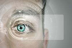 Identification of eye.jpg