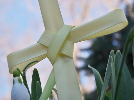 Lenten Mission - Palm Sunday