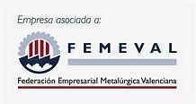 femeval_logo_edited.jpg