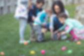 Yumurta Avcılık