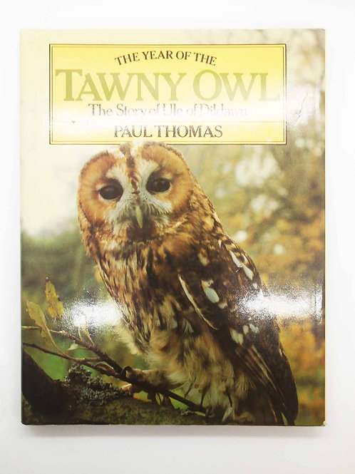 The Year of the Tawny Owl: The Story of Ule of Dildawn by Paul Thomas