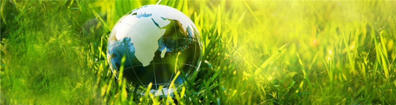 Baner Gestion Ambiental 20.jpg