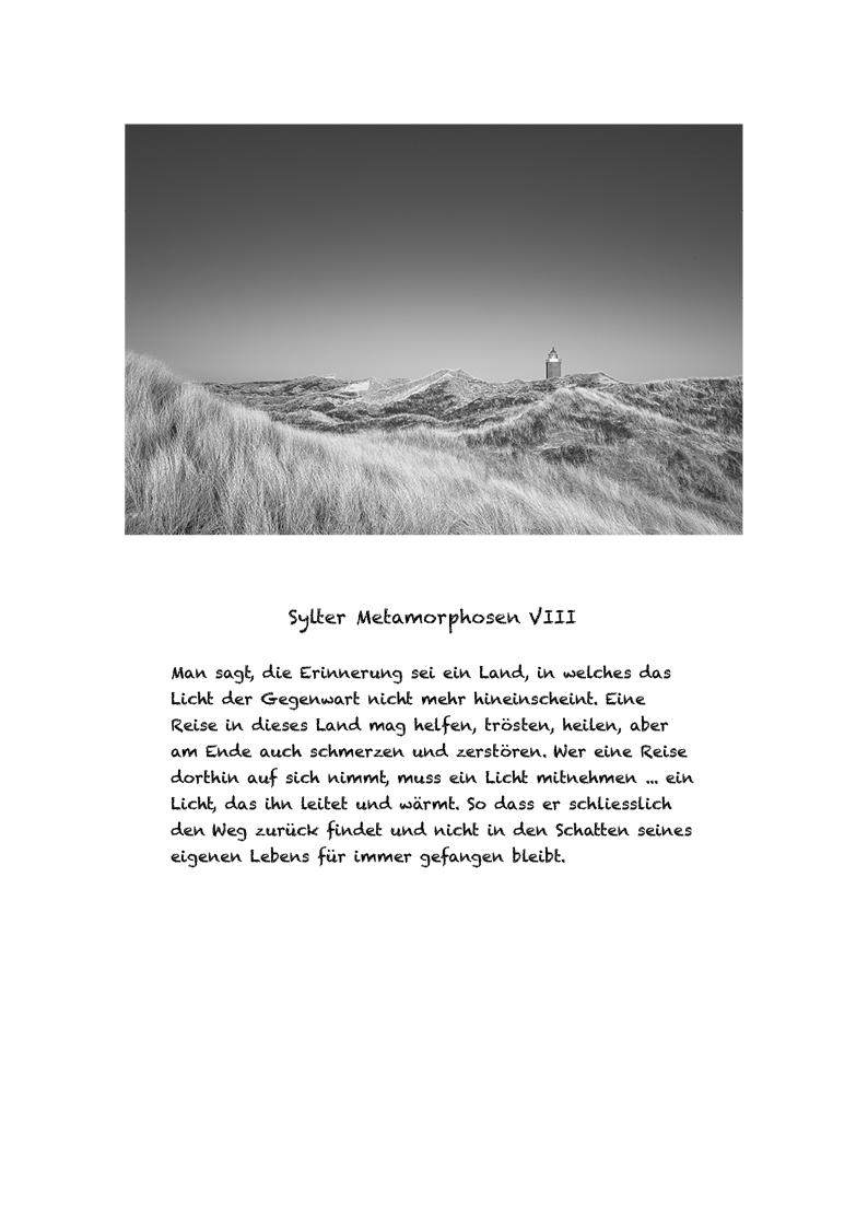 Sylter Metamorphosen Blatt 8