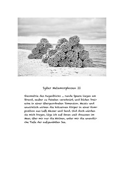 Sylter Metamorphosen Blatt 2