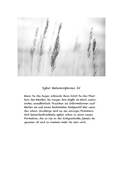 Sylter Metamorphosen Blatt 4