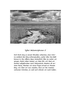 Sylter Metamorphosen Blatt 5