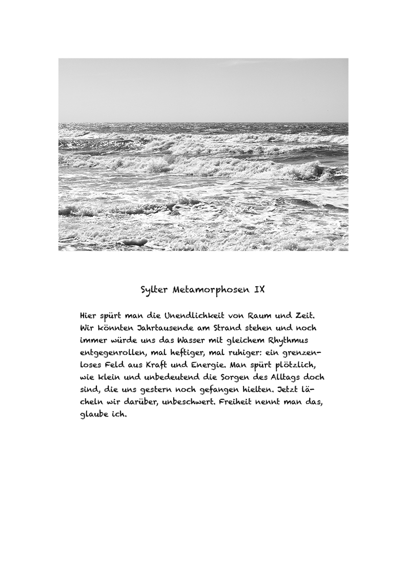 Sylter Metamorphosen Blatt 9