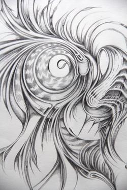 Field Sketch 8 - Detail