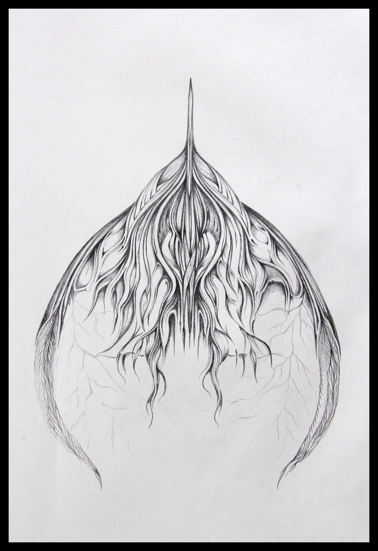 Field Sketch 11