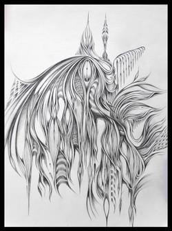Field Sketch 1