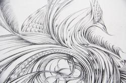 Field Sketch 12 - Detail