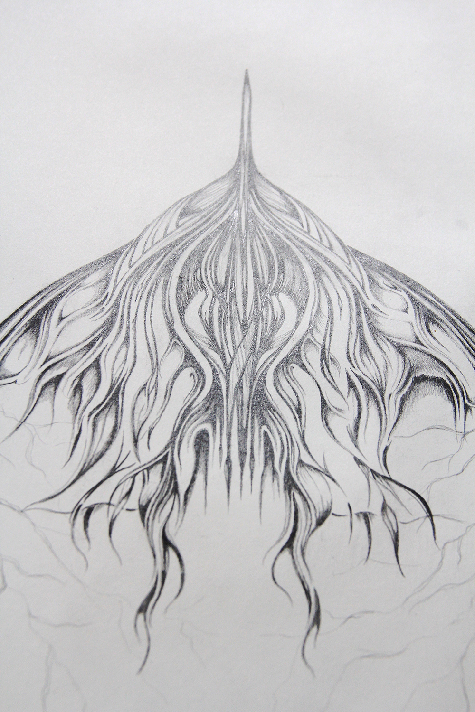 Field Sketch 11 - Detail