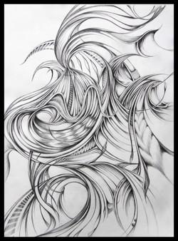 Field Sketch 4