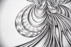 Field Sketch 5 - Detail