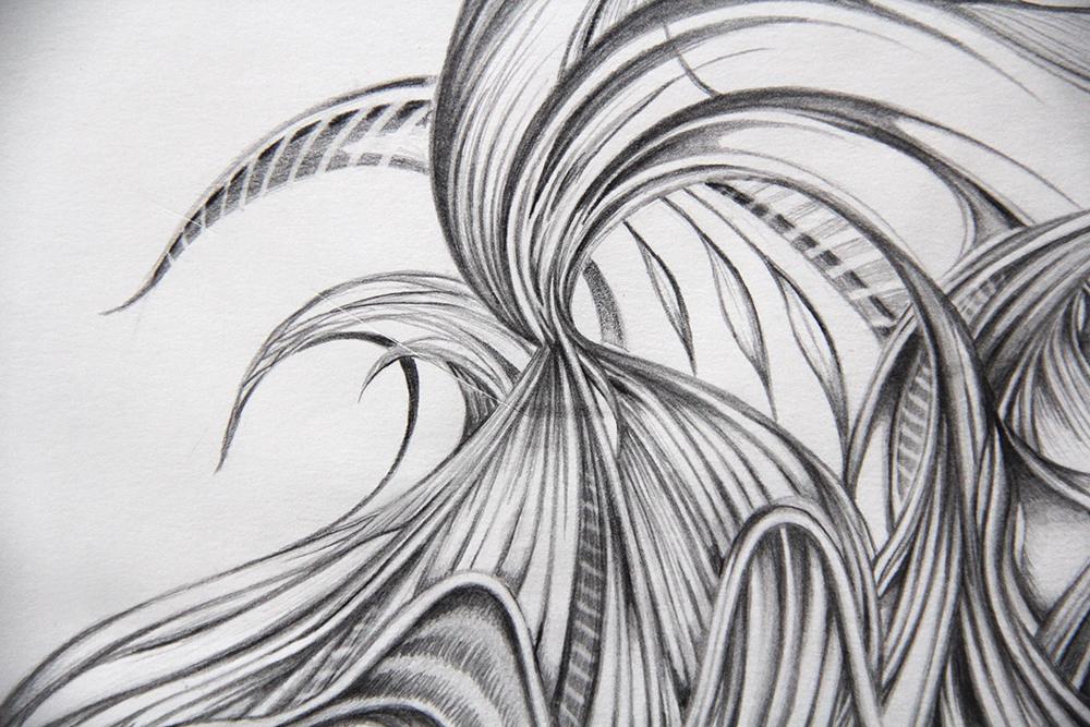 Field Sketch 4 - Detail