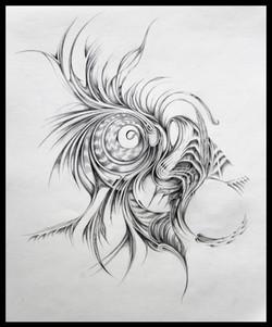 Field Sketch 8