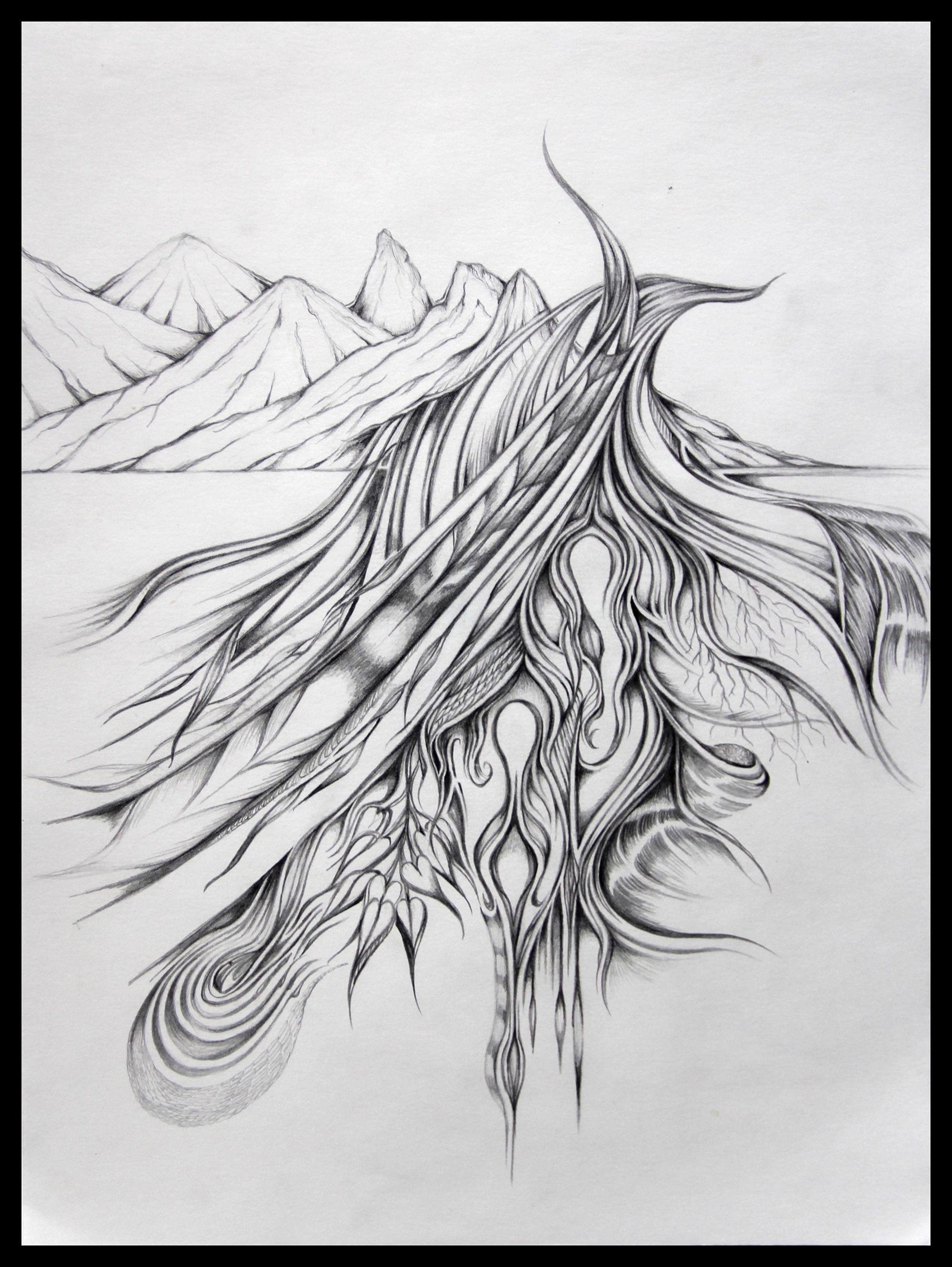 Field Sketch 2
