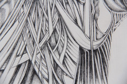 Field Sketch 10 - Detail