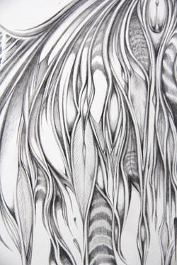 Field Sketch 1 - Detail