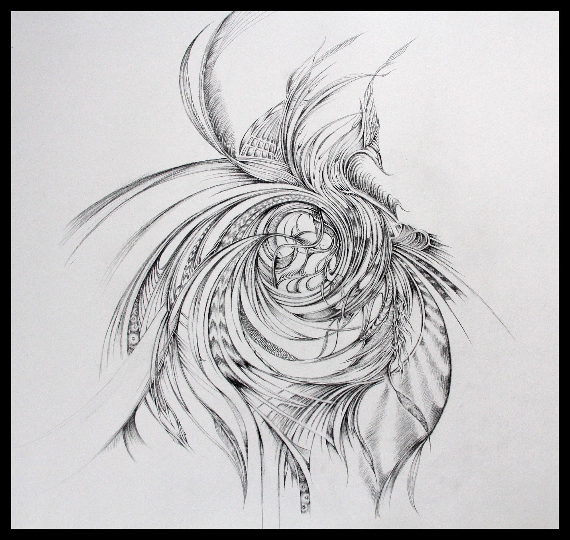 Field Sketch 12