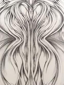 Field Sketch 14 - Detail