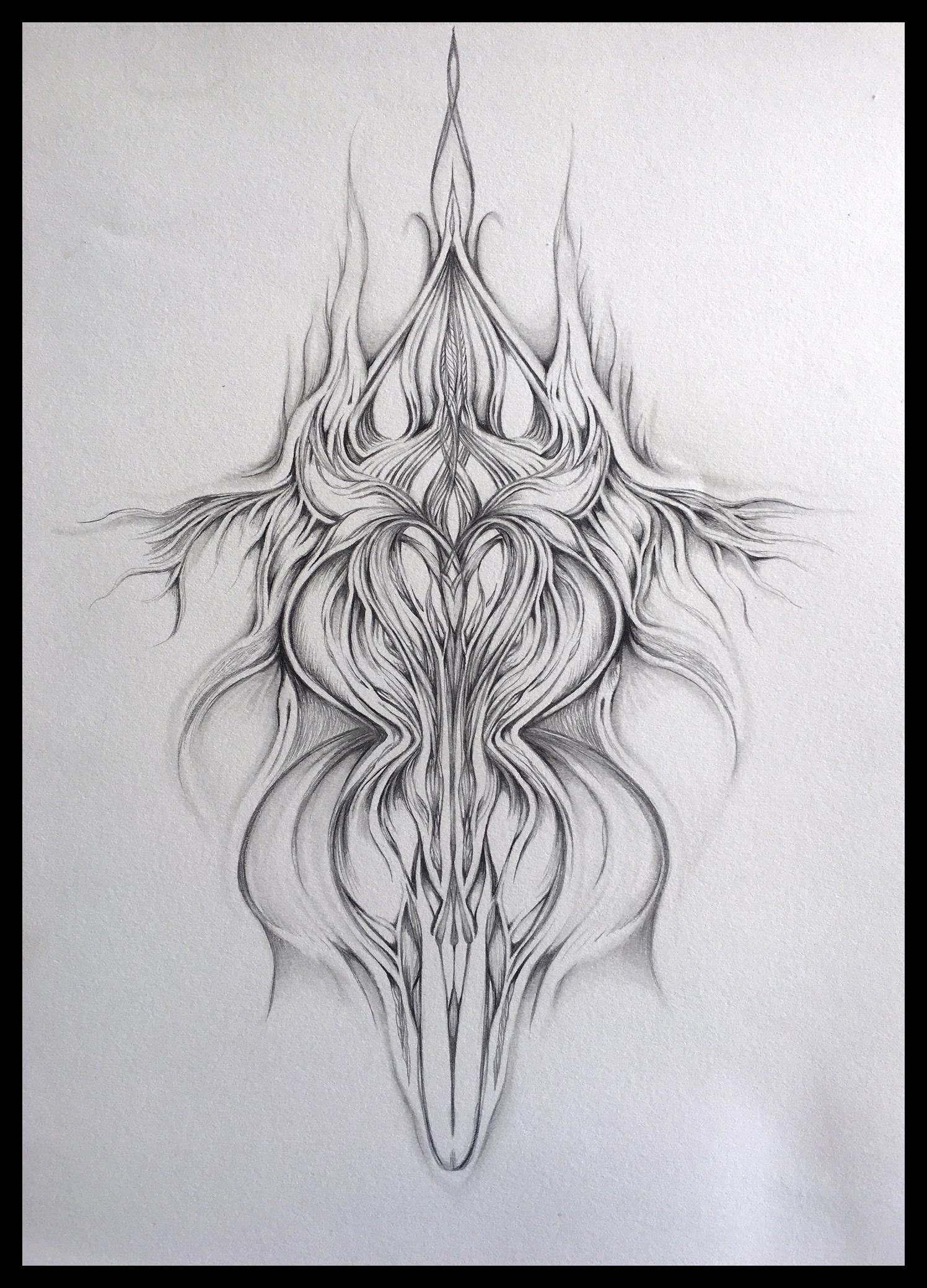 Field Sketch 14