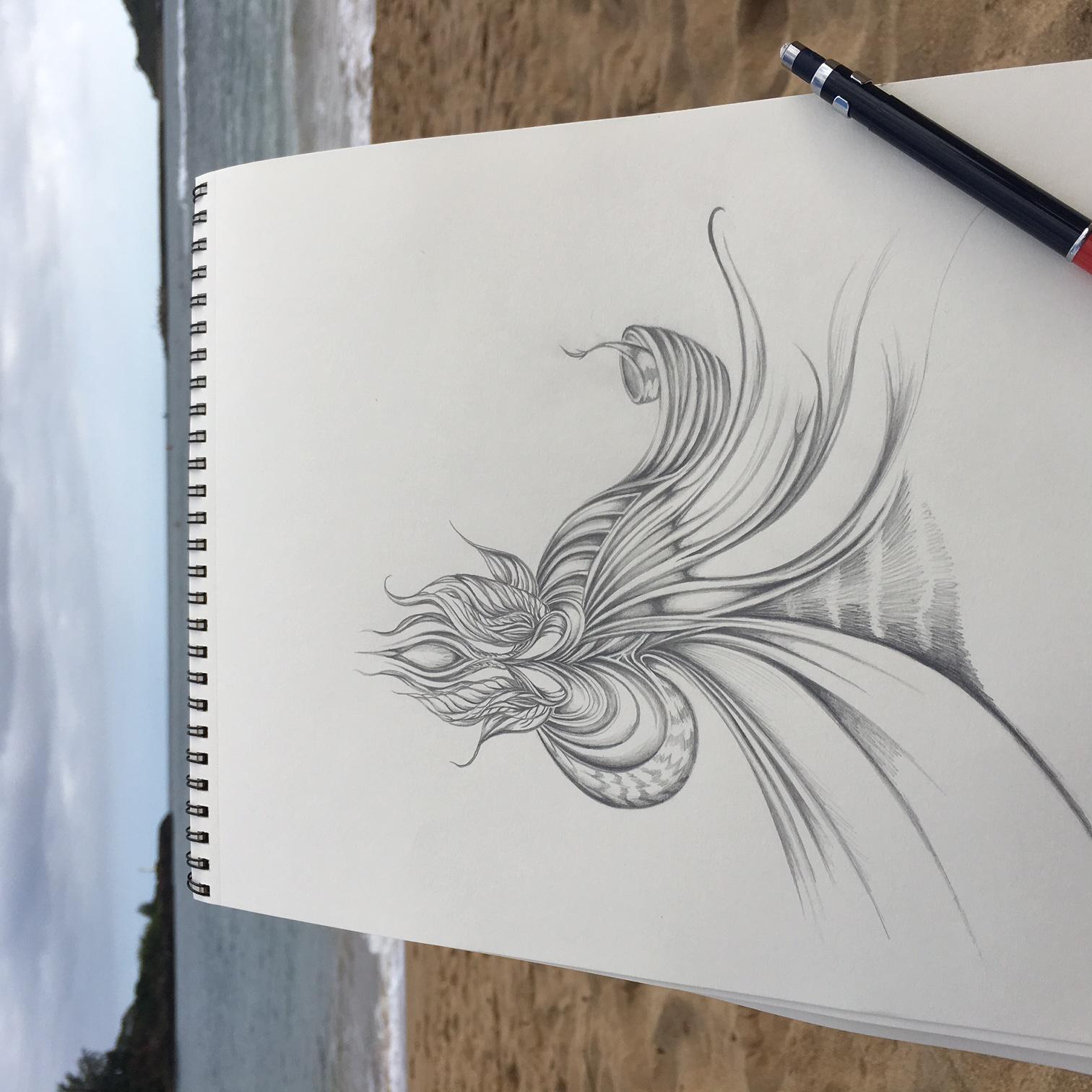 Field Sketch 5 - Context Shot
