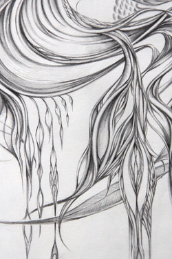 Field Sketch 3 - Detail