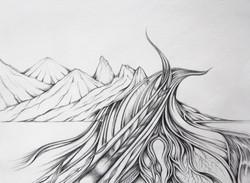 Field Sketch 2 - Detail
