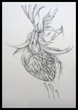 Field Sketch 13