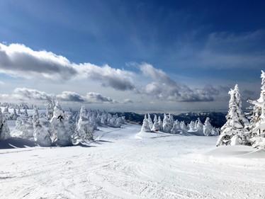 Mt.ZAO2