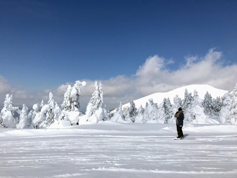 Mt.ZAO
