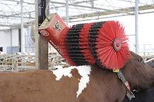 Lely Luna cow brush