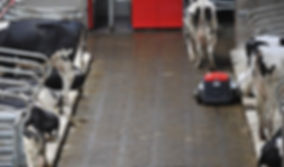 Lely Discovery slatted floor barn cleaning system