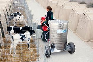 Milk taxi for calf feeding