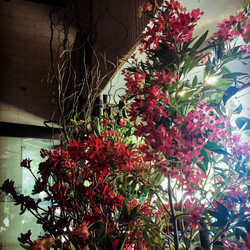 flowers_06