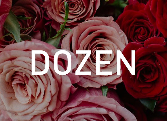 Coloured Dozen Roses