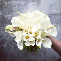 flowers_42