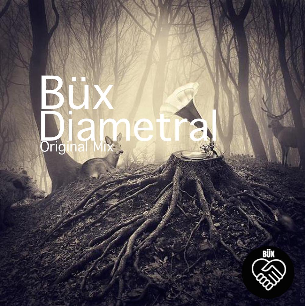 Büx - Diametral (Original Mix)