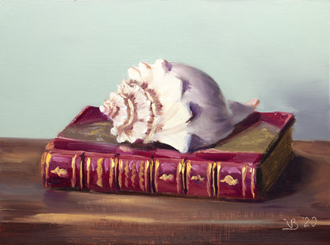Antique Book and a Seashell_1