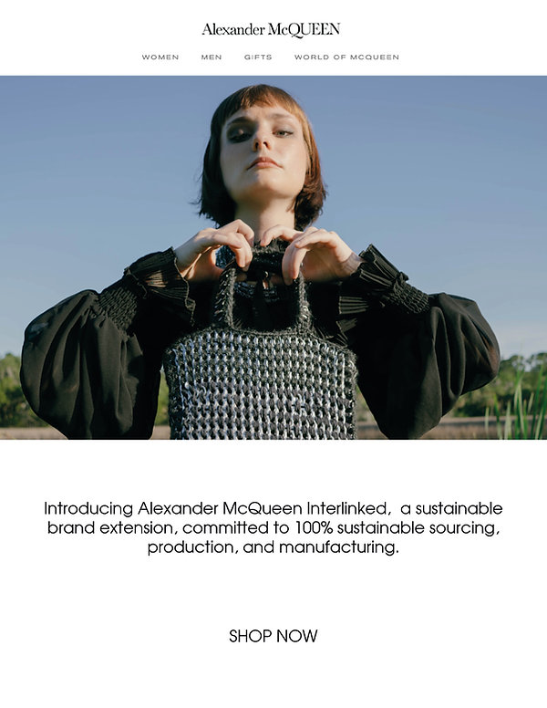 McQueen_promo_email(1).jpg
