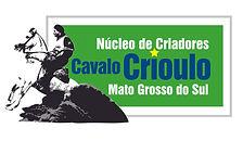 cavalo crioulo_Prancheta 1.jpg