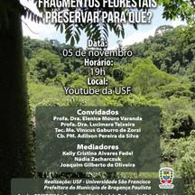 Webinário debaterá a preservação de fragmentos florestais