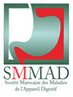 Logo SMMAD.png