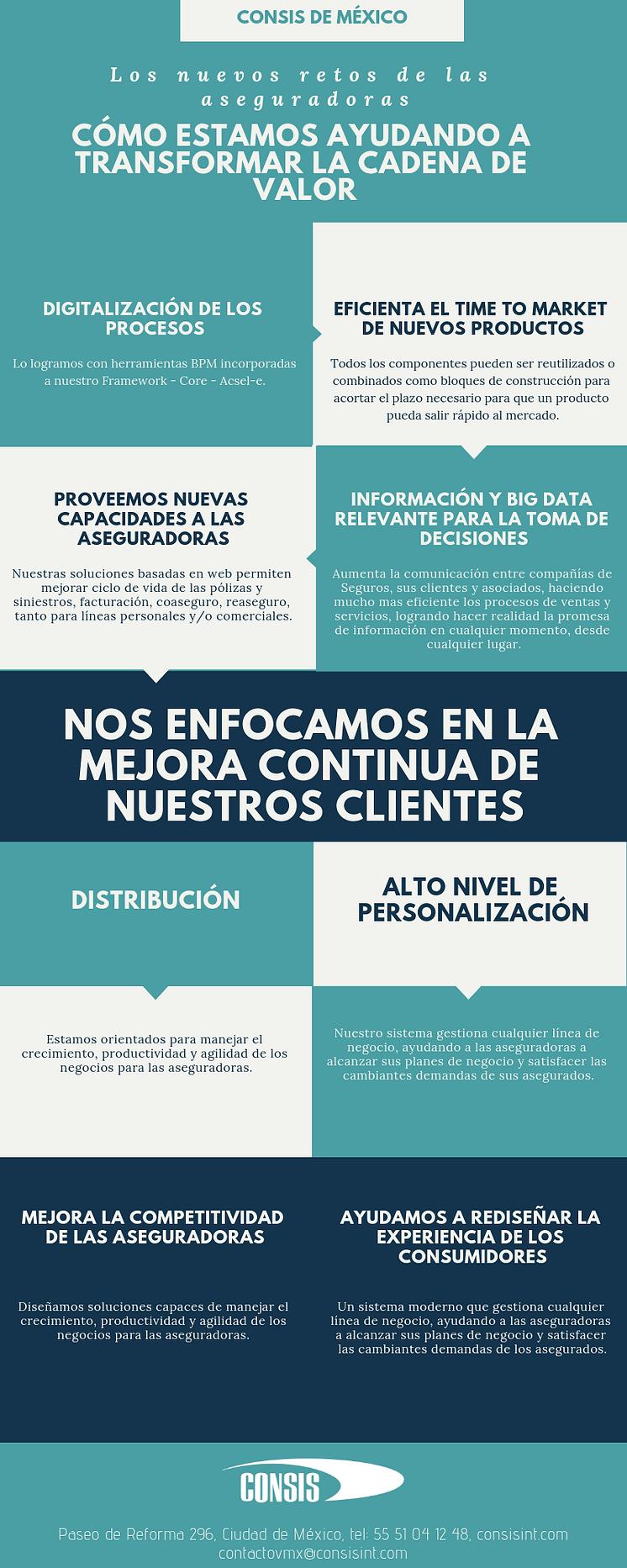 Infografia consis.png