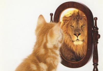 Self-confidence & Leadership