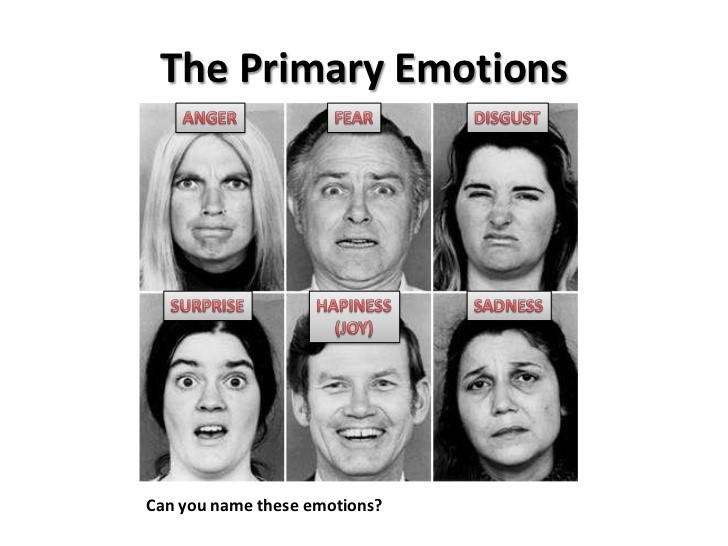 the primary emotions