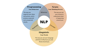 INTRODUCTION TO NLP NEURO LINGUISTIC PRO